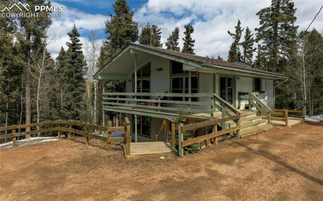 58 Cradle Lake Place, Divide, CO 80814 (#1298051) :: The Kibler Group