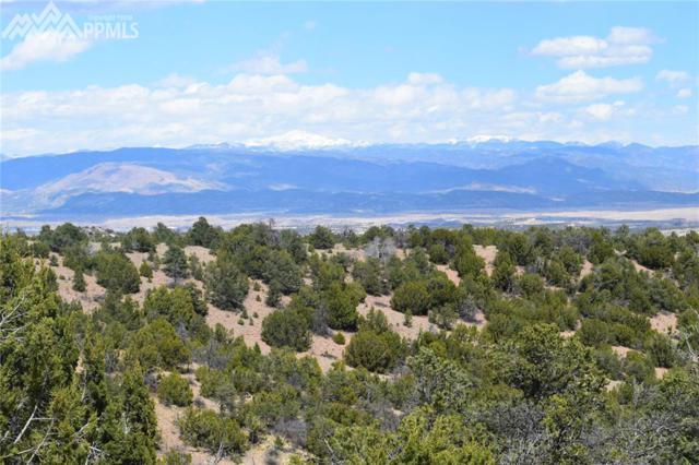 County 84 Road, Florence, CO 81226 (#1299703) :: Harling Real Estate