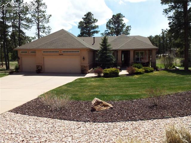15860 Woodmeadow Court, Colorado Springs, CO 80921 (#1301797) :: CC Signature Group