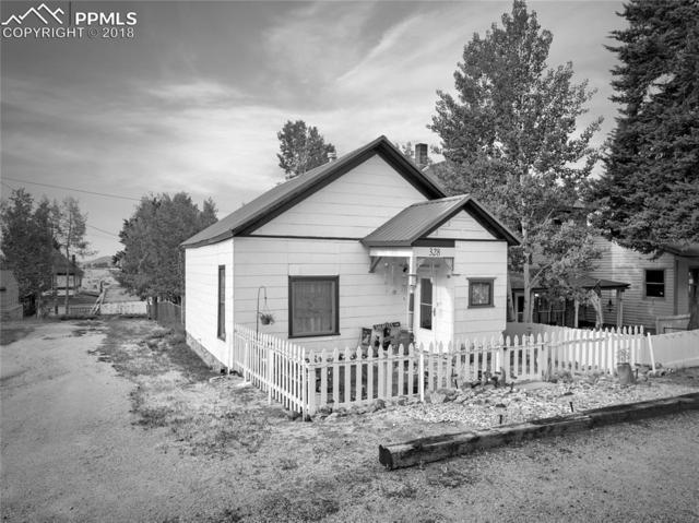 328 E Eaton Avenue, Cripple Creek, CO 80813 (#1314295) :: Jason Daniels & Associates at RE/MAX Millennium