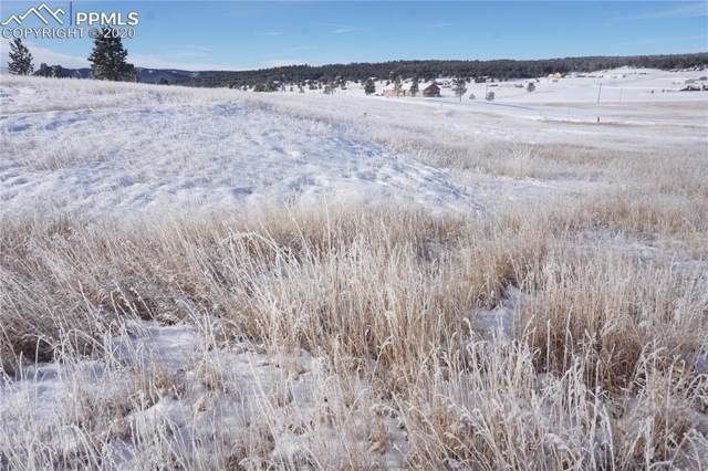 714 Empire Road, Florissant, CO 80816 (#1315306) :: Finch & Gable Real Estate Co.