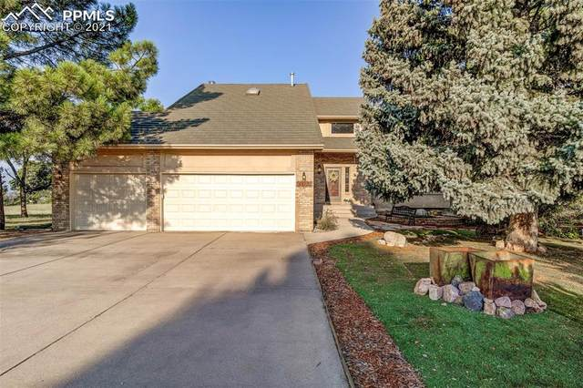 14120 Candlewood Court, Colorado Springs, CO 80921 (#1315340) :: Action Team Realty
