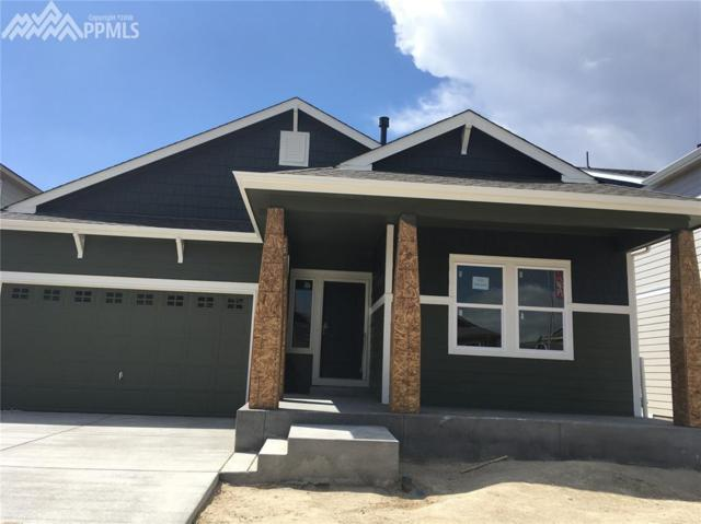 1755 Sandy Shore Lane, Monument, CO 80132 (#1321064) :: The Treasure Davis Team