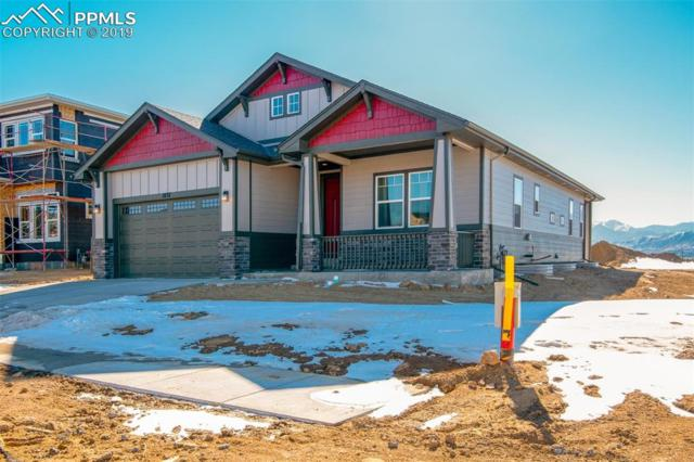 1037 Barbaro Terrace, Colorado Springs, CO 80921 (#1322161) :: Tommy Daly Home Team