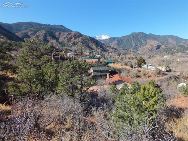 0 Puma Path, Manitou Springs, CO 80829 (#1322748) :: The Peak Properties Group
