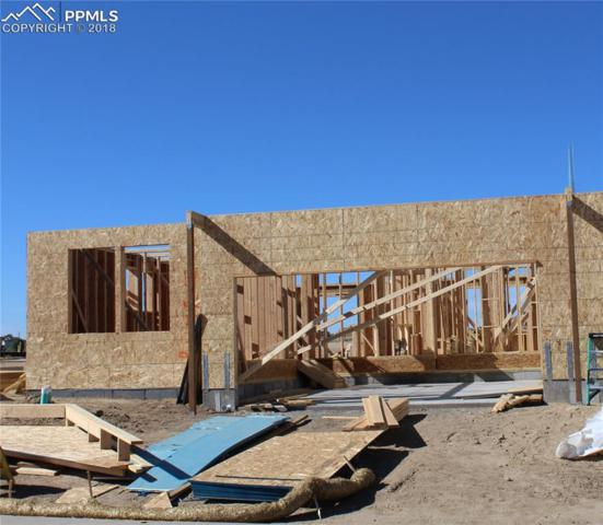 4252 Hessite Loop, Colorado Springs, CO 80938 (#1322854) :: Harling Real Estate