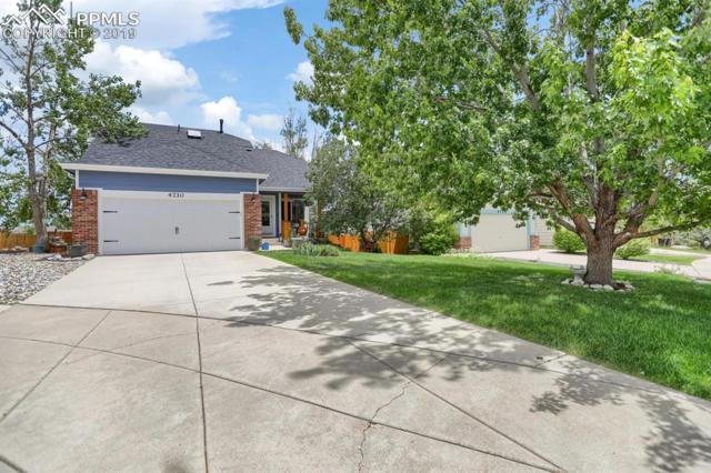 4730 Skywriter Circle, Colorado Springs, CO 80922 (#1326995) :: Jason Daniels & Associates at RE/MAX Millennium