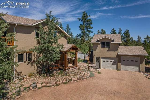 169 San Juan Lane, Westcliffe, CO 81252 (#1328008) :: Action Team Realty
