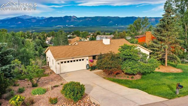 565 Rangely Drive, Colorado Springs, CO 80921 (#1331413) :: 8z Real Estate