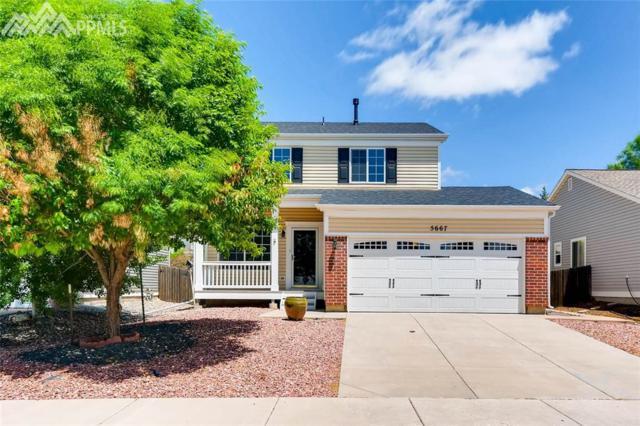 5667 Anna Lee Way, Colorado Springs, CO 80923 (#1331965) :: 8z Real Estate