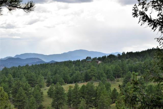 304 Bear Mountain Road, Florissant, CO 80816 (#1334267) :: 8z Real Estate