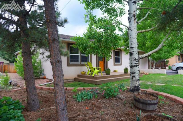 49 Lower Glenway Street, Palmer Lake, CO 80133 (#1335507) :: Group 46:10 Colorado Springs
