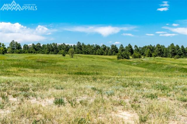 17071 Mahaffie Court, Monument, CO 80132 (#1336288) :: The Treasure Davis Team
