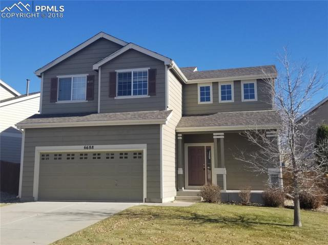 6688 Alibi Circle, Colorado Springs, CO 80923 (#1339466) :: CC Signature Group
