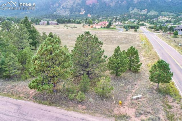 Lot 7 Stone View Road, Monument, CO 80132 (#1343118) :: Action Team Realty