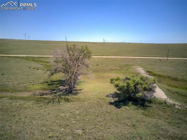 28203 Propel Point, Calhan, CO 80808 (#1344903) :: Action Team Realty