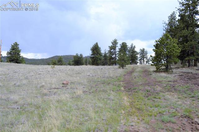 338 Park Ridge Drive, Florissant, CO 80816 (#1347495) :: Action Team Realty