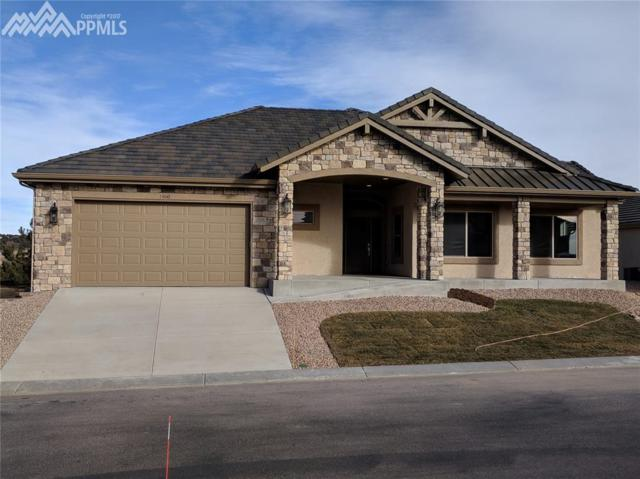1460 Symphony Heights, Monument, CO 80132 (#1347689) :: 8z Real Estate