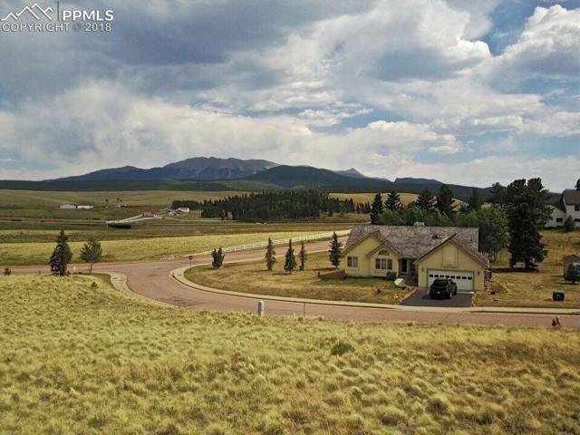 TBD Allison Place, Divide, CO 80814 (#1351143) :: 8z Real Estate