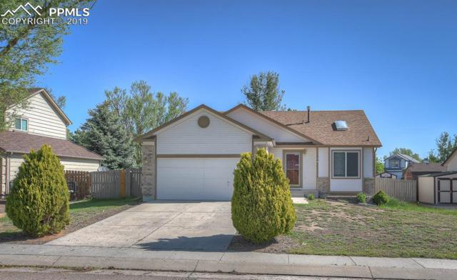 6940 Allens Park Drive, Colorado Springs, CO 80922 (#1357039) :: The Treasure Davis Team