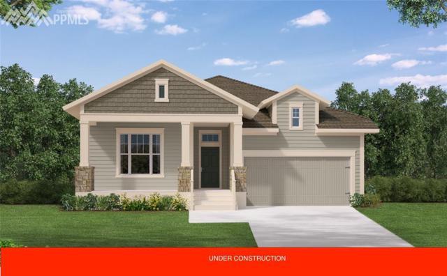 6250 Rowdy Drive, Colorado Springs, CO 80924 (#1357114) :: 8z Real Estate
