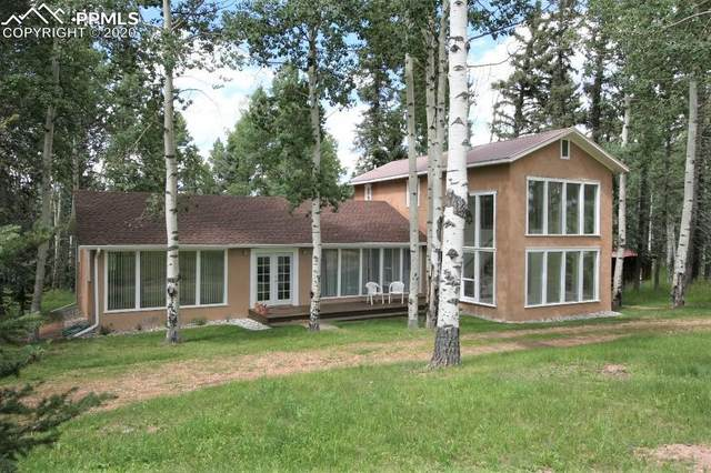 789 Ridge Drive, Divide, CO 80814 (#1360997) :: Action Team Realty