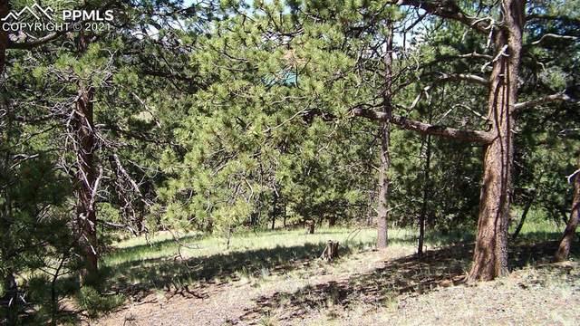 92 May Queen Drive, Cripple Creek, CO 80813 (#1361162) :: The Cutting Edge, Realtors