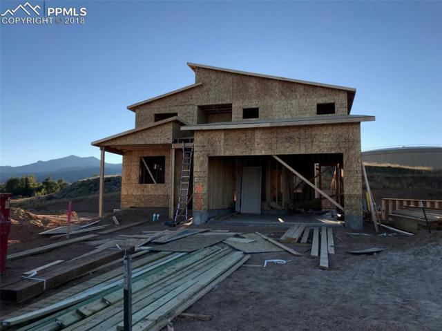 868 Uintah Bluffs Place, Colorado Springs, CO 80904 (#1363777) :: Action Team Realty