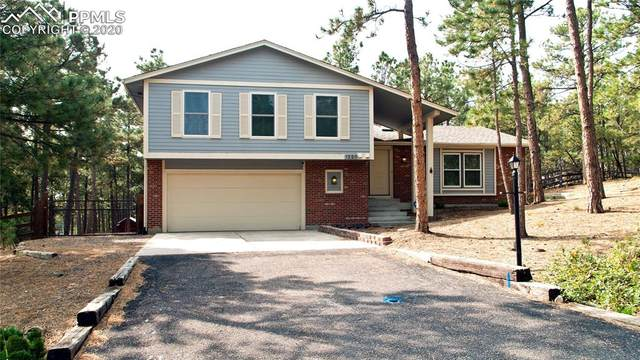 1225 Becky Drive, Colorado Springs, CO 80921 (#1368511) :: The Treasure Davis Team