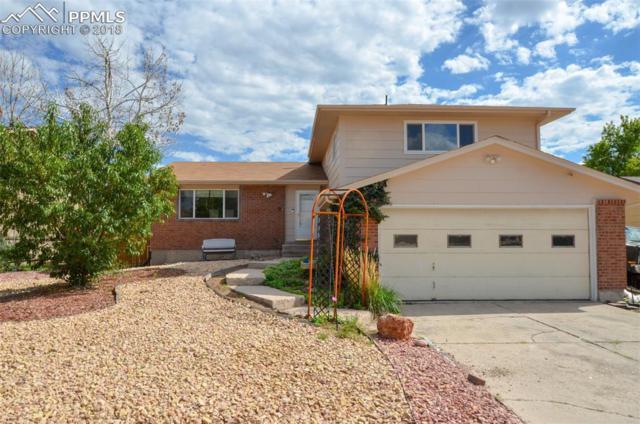 6375 Pushmataha Drive, Colorado Springs, CO 80915 (#1368536) :: The Treasure Davis Team
