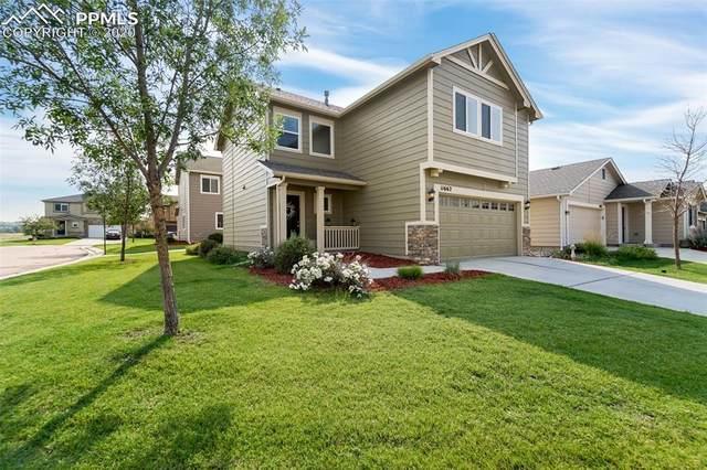 11662 Black Maple Lane, Colorado Springs, CO 80921 (#1370781) :: Venterra Real Estate LLC