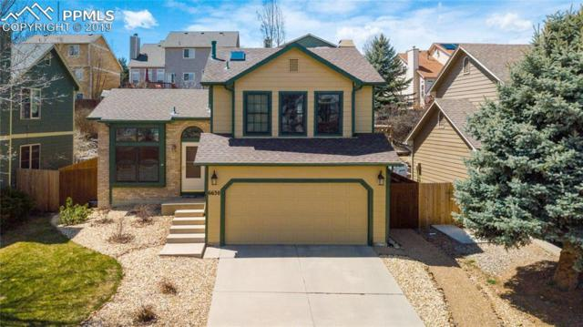 6630 Northwind Drive, Colorado Springs, CO 80918 (#1370998) :: Tommy Daly Home Team