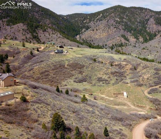 4345 Diamondback Drive, Colorado Springs, CO 80921 (#1371226) :: Harling Real Estate