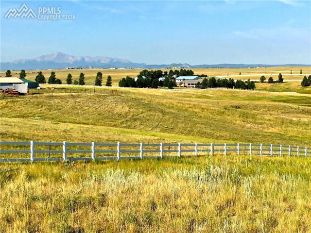 19260 Shiloh Ranch Road, Colorado Springs, CO 80908 (#1371254) :: 8z Real Estate