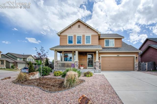 7985 Guinness Way, Colorado Springs, CO 80951 (#1374631) :: The Peak Properties Group