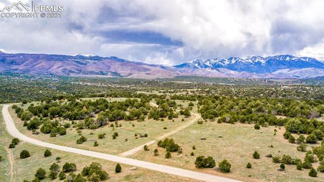 1069 Eagle Peak Circle, Cotopaxi, CO 81223 (#1374834) :: Tommy Daly Home Team