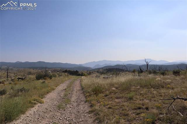 00 E Path, Cotopaxi, CO 81223 (#1379284) :: Tommy Daly Home Team