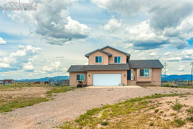 7304 Chewy Court, Fountain, CO 80817 (#1381772) :: Tommy Daly Home Team