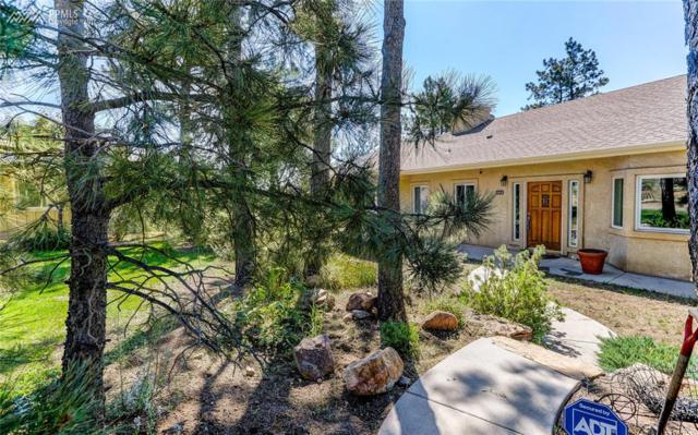 1025 Northfield Road, Colorado Springs, CO 80919 (#1382232) :: 8z Real Estate