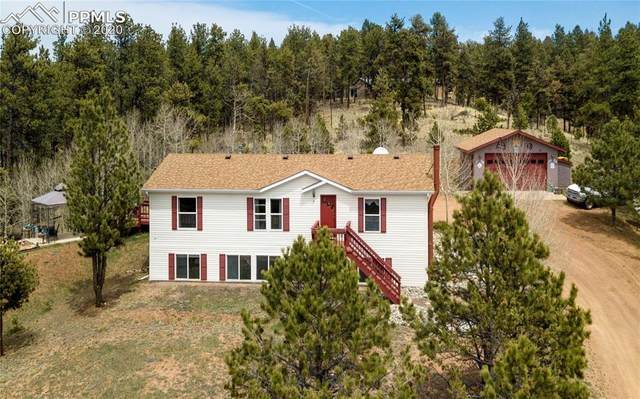 330 Manchester Drive, Florissant, CO 80816 (#1387277) :: 8z Real Estate