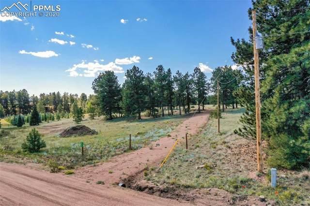 910 Pikes Trail, Guffey, CO 80820 (#1389749) :: CC Signature Group