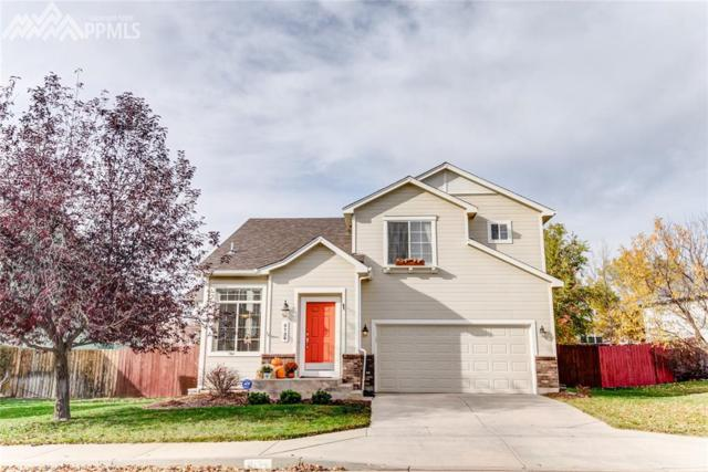 8134 Cooper River Drive, Colorado Springs, CO 80920 (#1392175) :: The Hunstiger Team