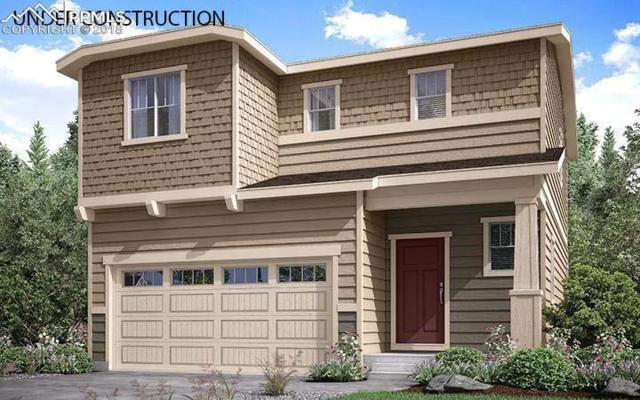3361 Evening Place, Castle Rock, CO 80109 (#1393593) :: CENTURY 21 Curbow Realty