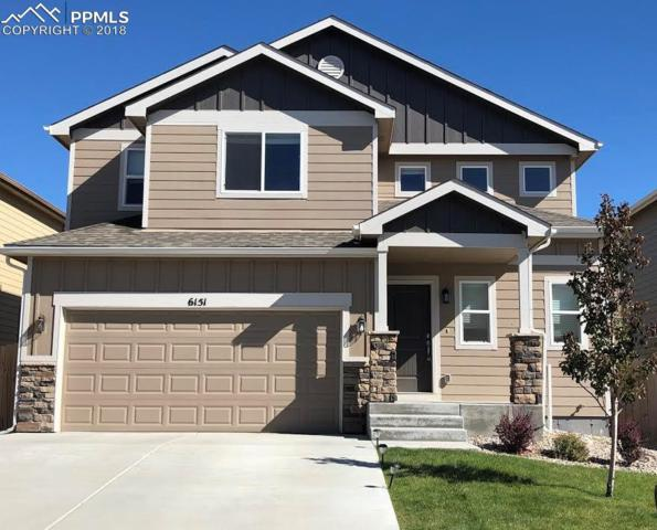 6151 Wallowing Way, Colorado Springs, CO 80925 (#1394902) :: Fisk Team, RE/MAX Properties, Inc.