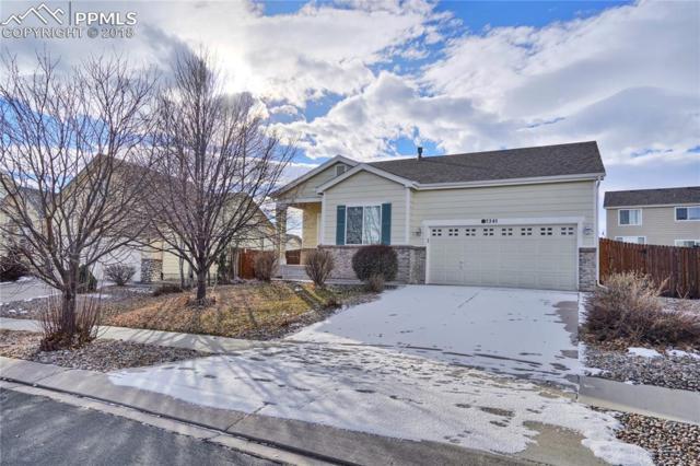 7341 Far Hill Drive, Colorado Springs, CO 80922 (#1395863) :: CENTURY 21 Curbow Realty
