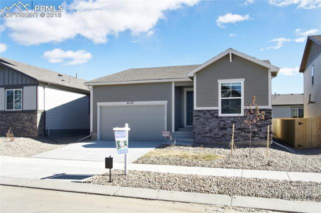 6127 Jorie Road, Colorado Springs, CO 80927 (#1398207) :: The Kibler Group