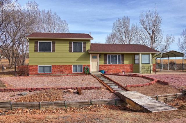 10845 Sunrise Road, Fountain, CO 80817 (#1399552) :: 8z Real Estate