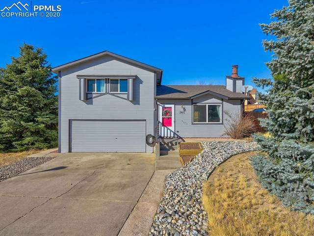 2165 Ambleside Drive, Colorado Springs, CO 80915 (#1399673) :: The Daniels Team