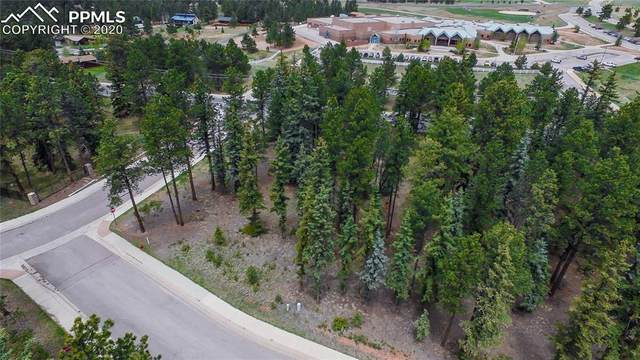 1265 Cottontail Trail, Woodland Park, CO 80863 (#1406676) :: Colorado Home Finder Realty