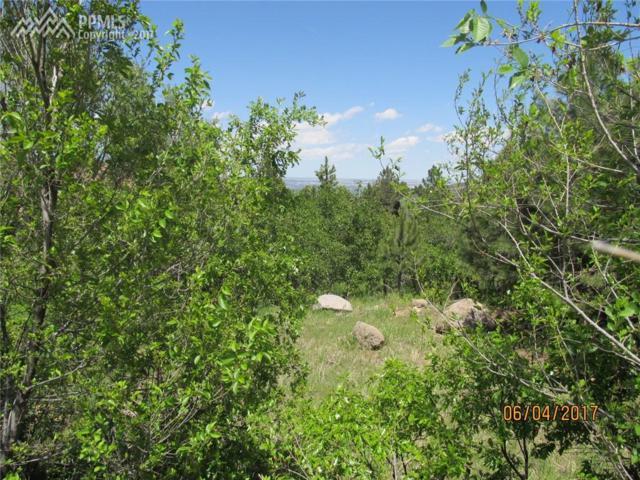 367 Irvington Court, Colorado Springs, CO 80906 (#1407802) :: 8z Real Estate